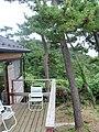 Toyaba Hanabuchihama, Shichigahama-machi, Miyagi-gun, Miyagi-ken 985-0803, Japan - panoramio (6).jpg