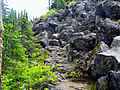 Trail along the Takh Takh Lava Flow.jpg