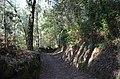 Trilho do Castro da Bóca I (31825510533).jpg