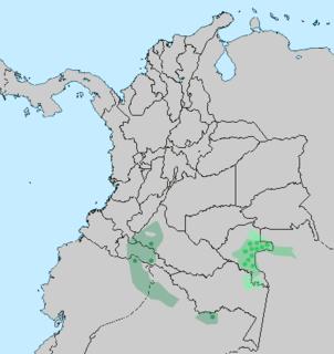 Tucanoan languages language family