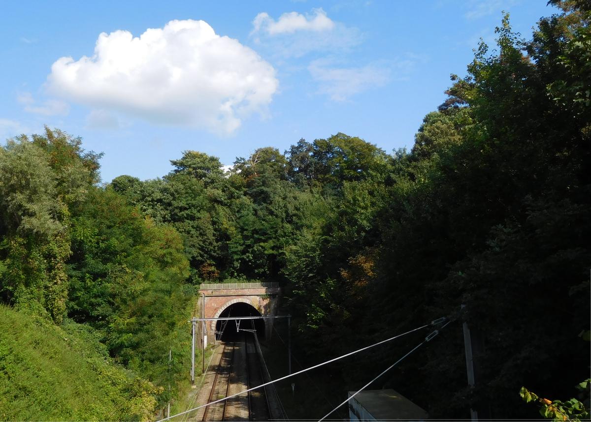 Tunnel du bois de la cambre wikip dia for Bois de la chambre