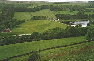 Tunstall Reservoir lake in the United Kingdom