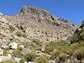 Turtlehead Peak from Gateway Canyon 2.jpg
