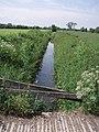Twelve Foot Rhyne - geograph.org.uk - 454539.jpg