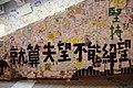 Umbrella Revolution (15841478420).jpg