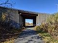 Underpass, Quequechan River Rail Trail, Fall River MA.jpg