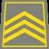 Uzbek Army Rank-04