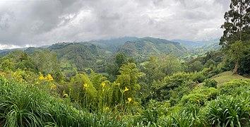 Valle de Cocora, Colombia 06.jpg