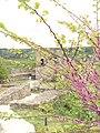Veliko Tarnovo 124.jpg