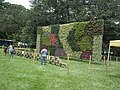 Vertical Garden from Lalbagh flower show Aug 2013 8793.JPG