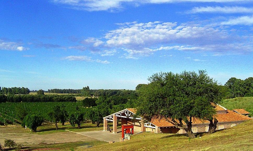 View of Al Este Bodega y Vinedos