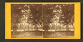 View of the lake, from Robert N. Dennis collection of stereoscopic views 3.png