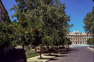 Ducal Palace of Vila Viçosa - Tree-lined roadway to the palace, part of the remodelled grounds