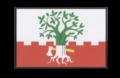 Vlajka obce Buk.png
