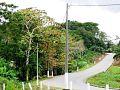 Vue d'une route de Kango.jpg