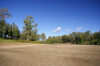 Southeast Australia temperate savanna Ecoregion (WWF)