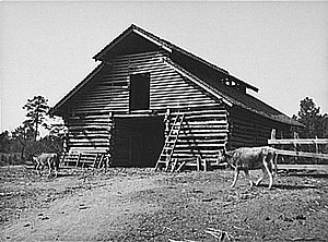 Lee Pressman - Barn on tenant's farm in Walker County, AL (1937), symbol of AAA efforts