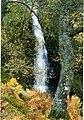 Waterfall on the Black Burn - geograph.org.uk - 1481369.jpg