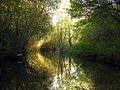 Weston Berkshire.jpg