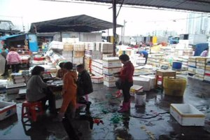 File:Wholesale fish market at Haikou New Port - 01.ogv