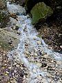 WikiProjekt Landstreicher Geotop Eistobel 29.jpg