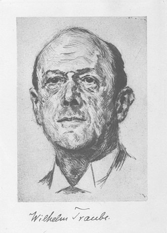 Wilhelm Traube - Wilhelm Traube 1926