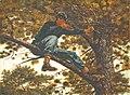 Winslow Homer - Sharpshooter.jpg