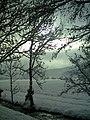 Winter Light Glottertal - Mythos Black Forest Photography - panoramio (12).jpg