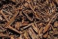 Wood Chip Mulch Texture DTXR-WD-CP-1.jpg