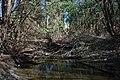 Woody creek 1 (27945186108).jpg