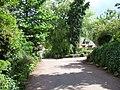 Wootton Courtenay - Village lane - geograph.org.uk - 177301.jpg