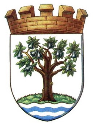 Worcestershire County Council - Image: Worcs Coat Arms