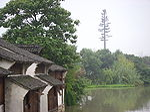 Wuzhen Xizha 2009-17.jpg