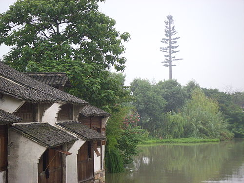 Communications tower, at the horizon on the right, camouflaged as a tall tree. Wuzhen Xizha 2009-17.jpg