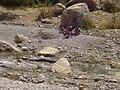 Yasouj - panoramio - Hosein(hpjoojoo).jpg