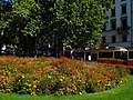 Zürich - Stadelhoferplatz IMG 4438.jpg
