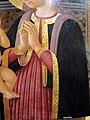 Zanobi machiavelli, madonna in adorazione del bambino, 1460-170 circa 04.JPG