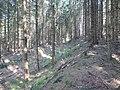 Zehnsberg (26).jpg