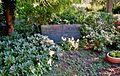 Zentralfriedhof Ibbenbueren Familiengrab Schaefer 1.jpg