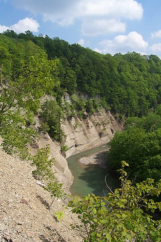 Zoar Valley - Image: Zoar Valley South Branch Gorge