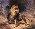 """A Lion"".jpg"