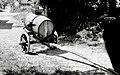 """""""Baća"""" (voz za vožnjo vode s studenca) s sodom in lijakom, Podlož 1962.jpg"""