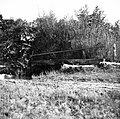 """""""Brv"""" pred mlinom na Virji, Kraljič, Vrbičje 1948.jpg"""