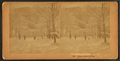 'Bright, Bright as Day.', from Robert N. Dennis collection of stereoscopic views.png