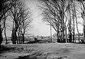 (Inondations de 1875, ruines du pont Saint-Michel) - Fonds Trutat - 51Fi247.jpg