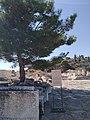 Αρχαιολογικός χώρος Ελευσίνας 32.jpg