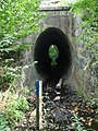 Водопропускна труба (струмок Брід).jpg