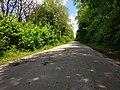 Дорога до с. Давидківці, фото 2.jpg