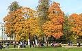 Екатерининский парк в Царском Селе 2H1A2609WIR.jpg