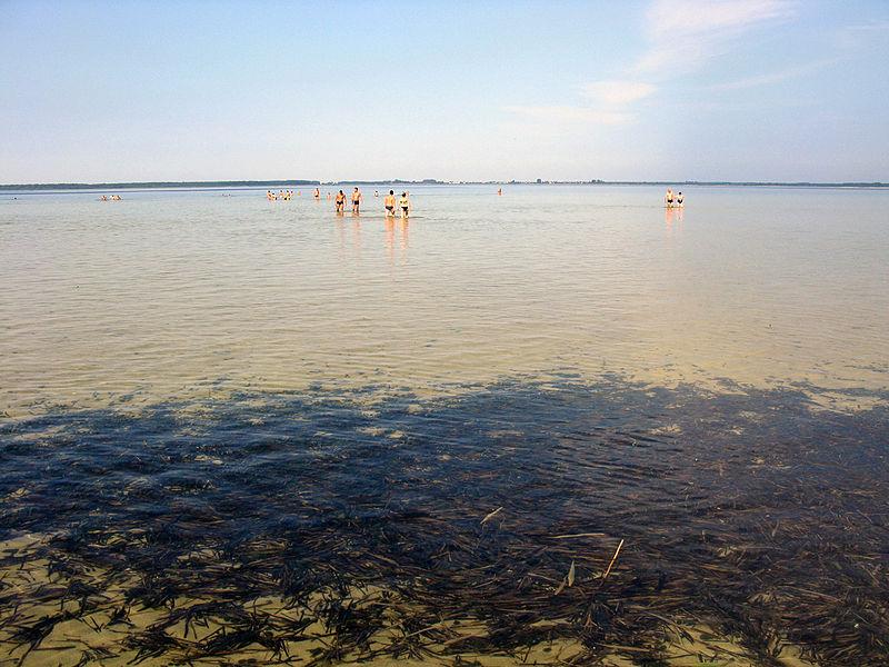 File:Озеро Світязь. 01.JPG